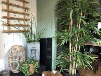 kunstplanten in huis: nep hoeft niet lelijk te zijn